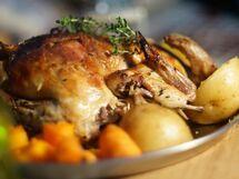 レシピが時代を語る! ひと皿から眺める料理研究家の系譜
