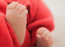 出世と出産の二兎を追う2つの方法